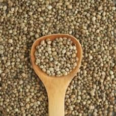 Купить семена пищевой конопли в Украине