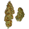 семена марихуаны Auto Gagarin fem