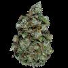 семена марихуаны Fractal