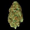 семена марихуаны Auto Hindu Kush